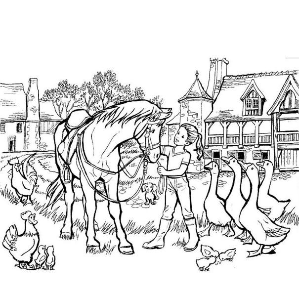 Índice de dibujos: caballos