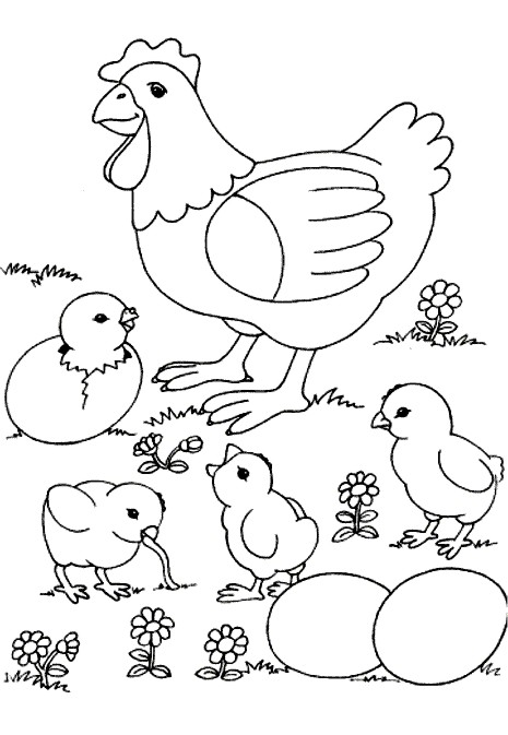 Chicken Coloring Page Farm Animals
