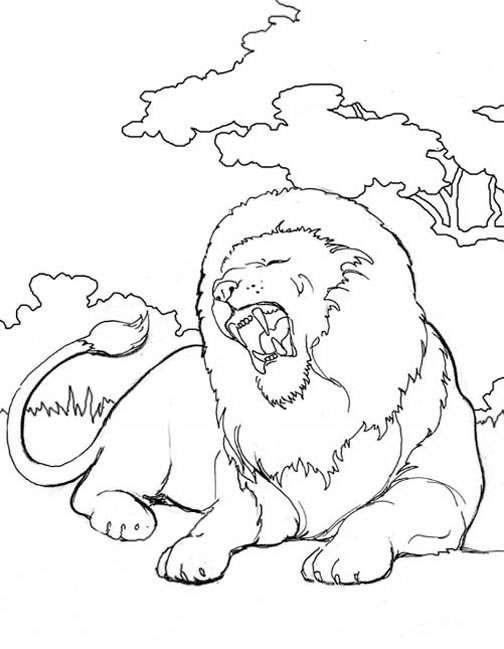 Índice de dibujos: leones