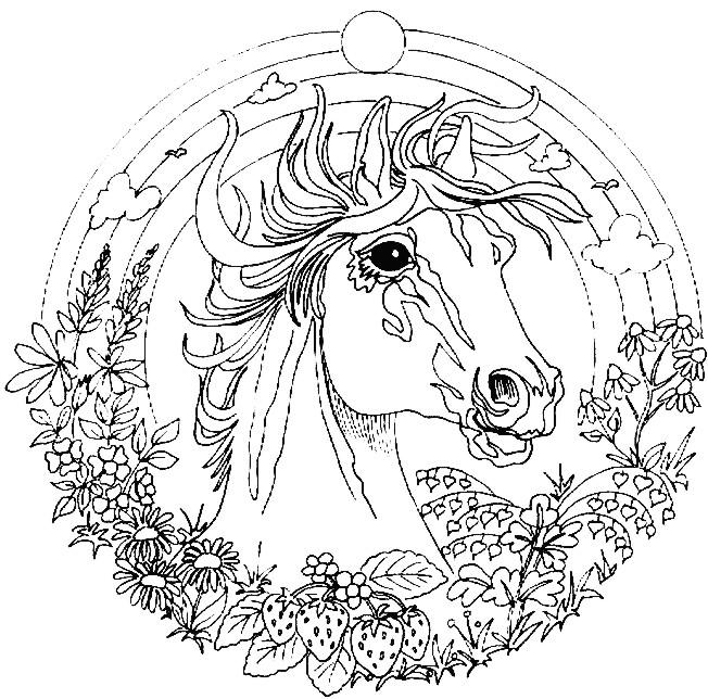 Imagen para colorear animales - Imagui
