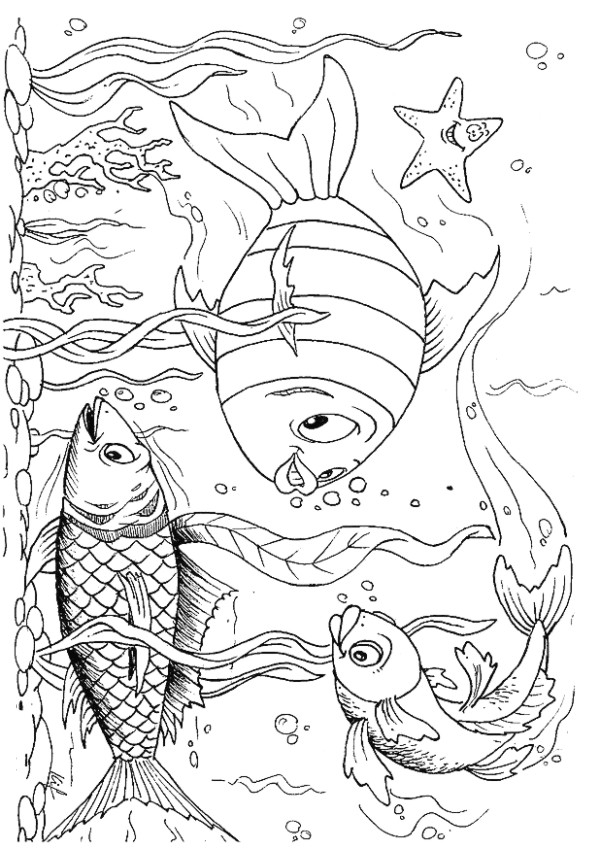 la state freshwater fish coloring pages - photo #15